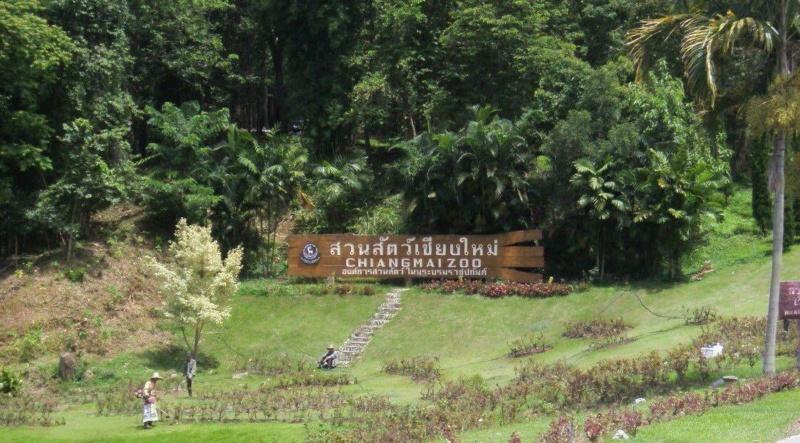 Wanderlustbee Chiang Mai, Thailand. Chiang Mai Zoo