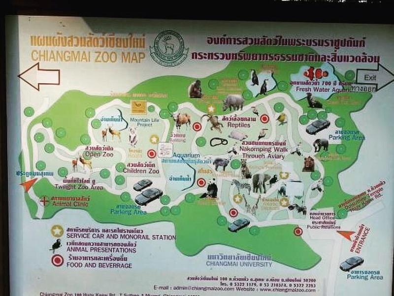 Chaing Mai zoo map of animals
