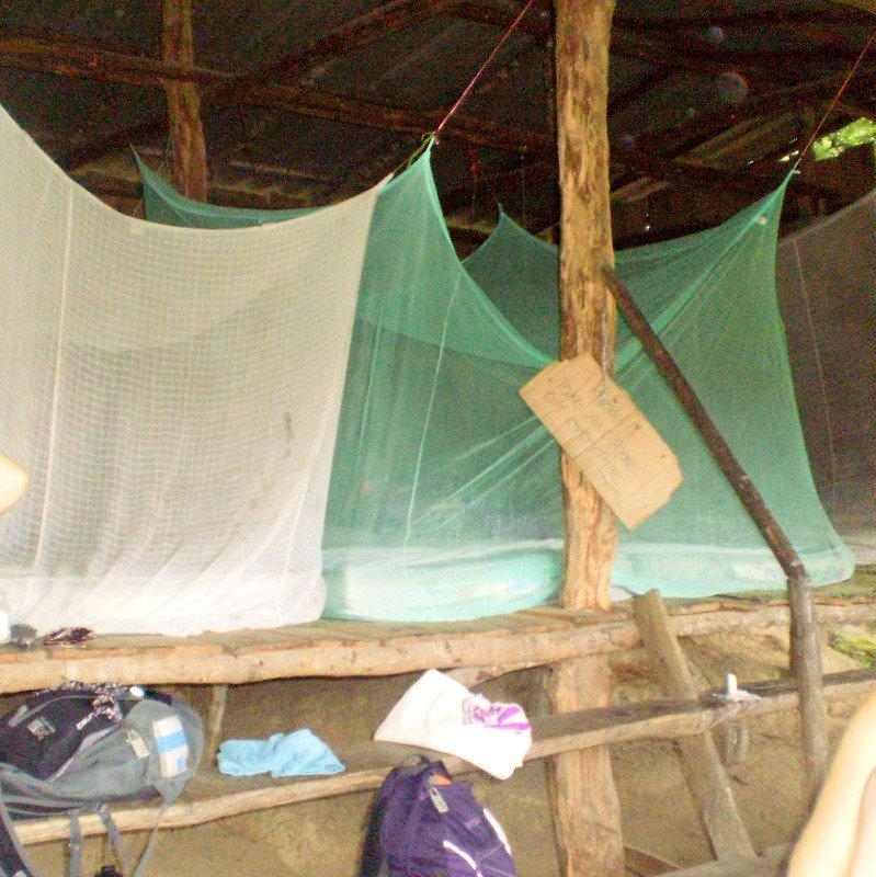 wanderlustbee jungle trekking in chiang mai