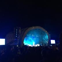 wanderlst bee @ YNOT Festival