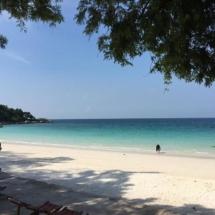 wanderlustbee review of modus resort pattaya