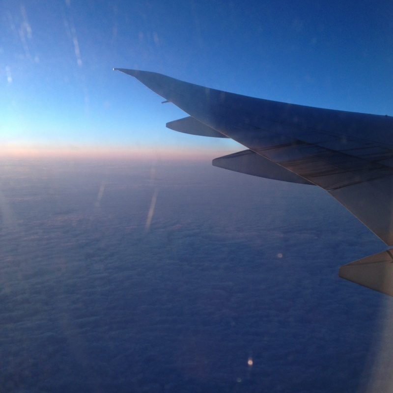 Wanderlust bee plane view