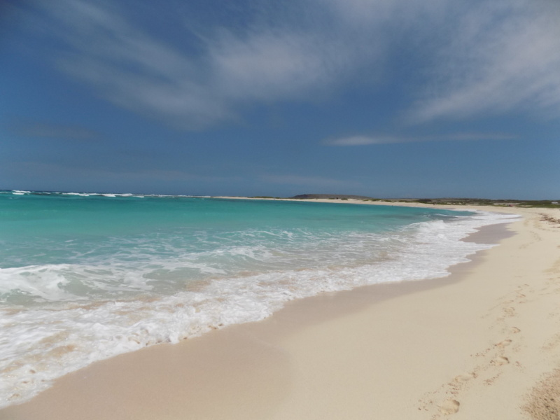 Wanderlustbee- Grapefield beach, Aruba, Caribbean