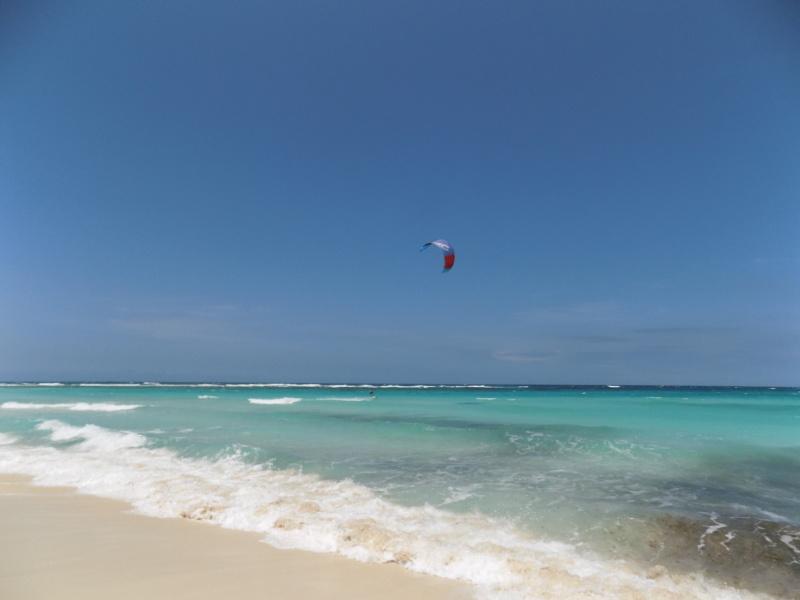 wanderlustbee - grapefield beach, Aruba, Carribean