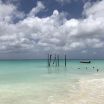 wanderlustbee Aruba Caribbean