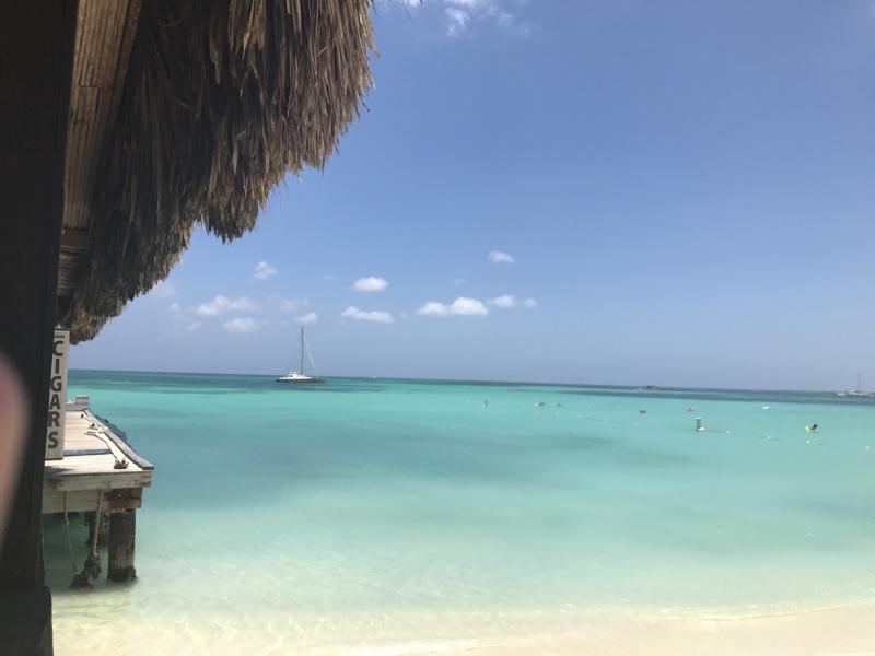 wanderlustbee - palm beach, Aruba, Carribean