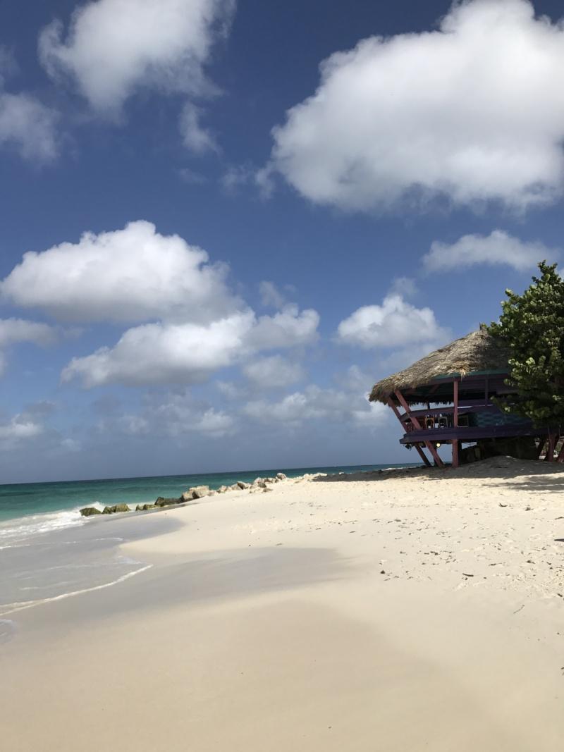 wanderlustbee - Aruba, Caribbean