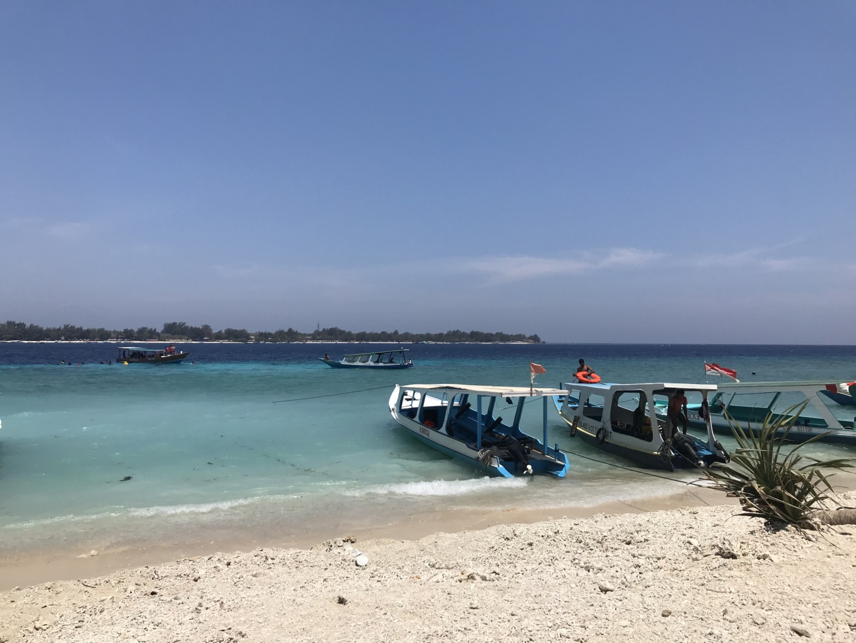Wanderlust bee - Gili Air,  Bali