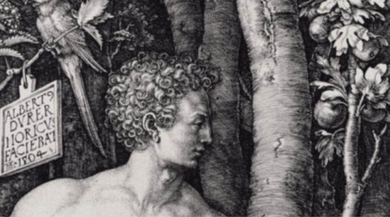 ÂDEM'İN YARATILIŞI /// Adem's Creation