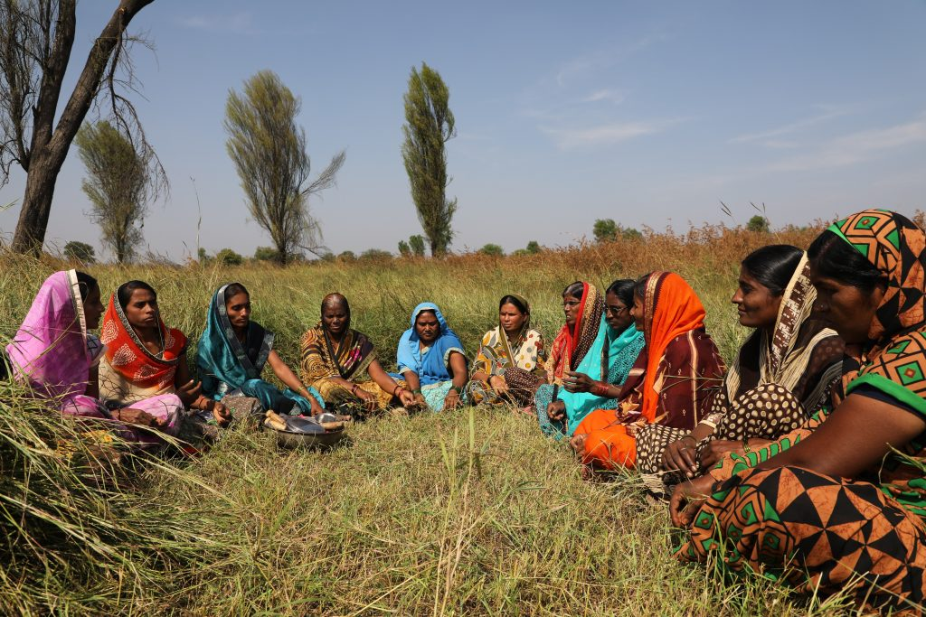 gender bias in agriculture technology