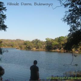 RoadtripthatRoared Hillside Dams