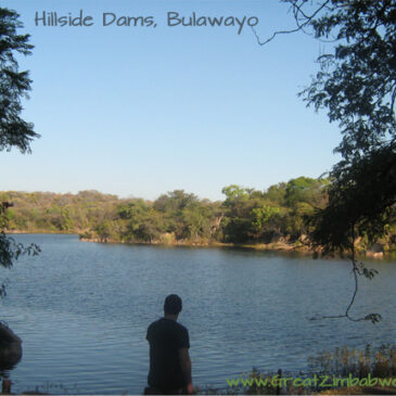 The roadtrip that roared: #2 Bulawayo