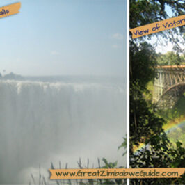 Victoria Falls Main and Bridge