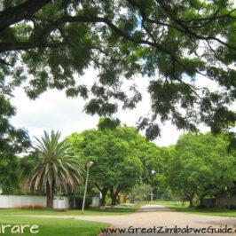 Avondale Harare Street