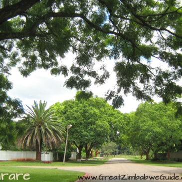 The roadtrip that roared: #9 Harare and Coffee