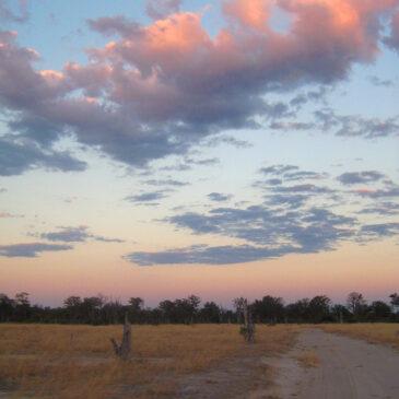 The roadtrip that roared #13: A fortunate series of events