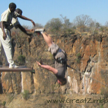 Best Vic Falls activities: 3. Do the gorge swing or highwire in Victoria Falls