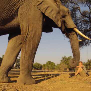 Man and elephant by Lola Photography