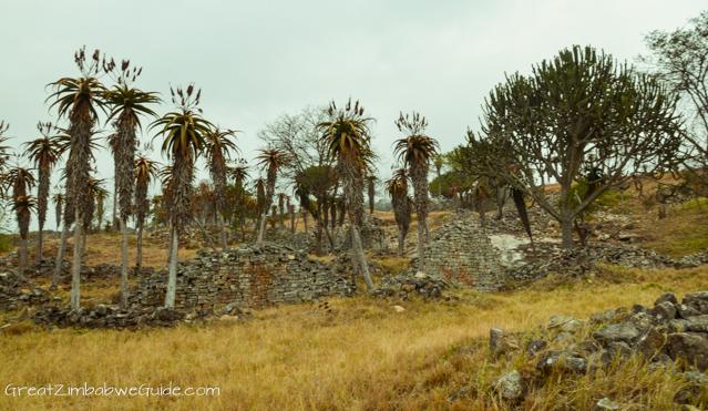 Great Zimbabwe Ruins Monument (1 of 1)-2