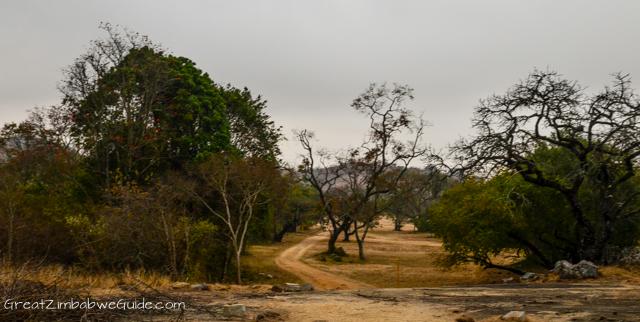Great Zimbabwe Ruins Monument (1 of 1)-21
