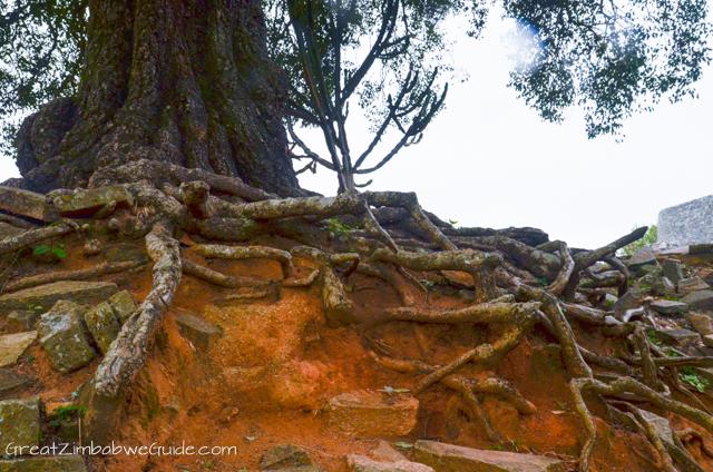 Great Zimbabwe Ruins Monument (1 of 1)-9