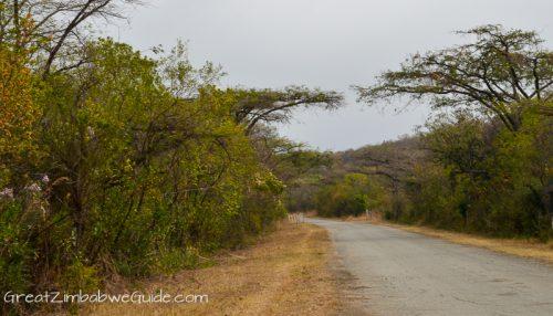 Great Zimbabwe Guide Accommodation-1-3