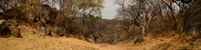 Bulawayo travel guide: Everything you need to know