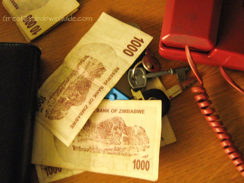 Great Zimbabwe Guide 2008 currency money