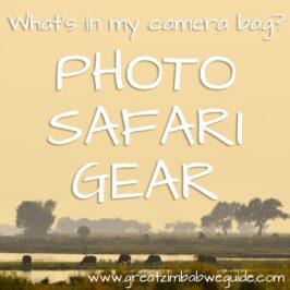 Photo safari gear