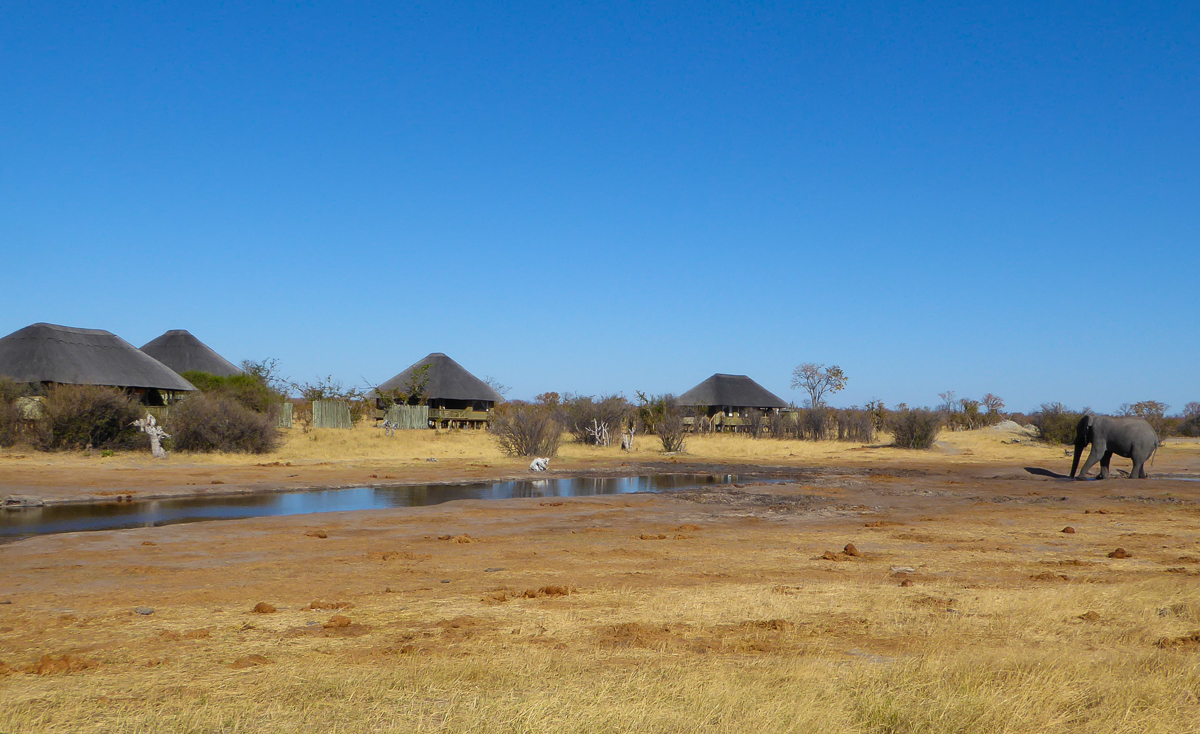 Nehimba Safari Lodge Hwange