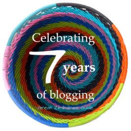 Blogging Zimbabwe Beth