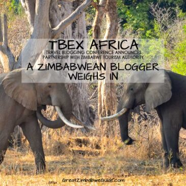 TBEX Africa announcement: response from a Zimbabwe travel blogger