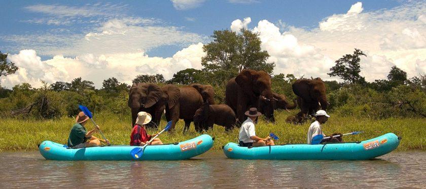ZIMBABWE-MANA-POOLS-CANOE-AFRICA