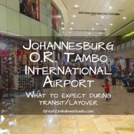Transit through Johannesburg International Airport Transfer Info Tambo