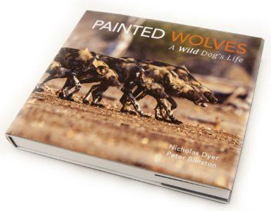 Painted Wolves Zimbabwe