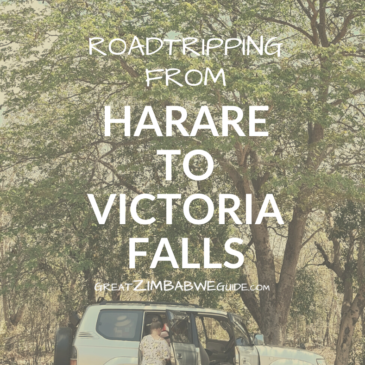 Road tripping from Harare to Victoria Falls