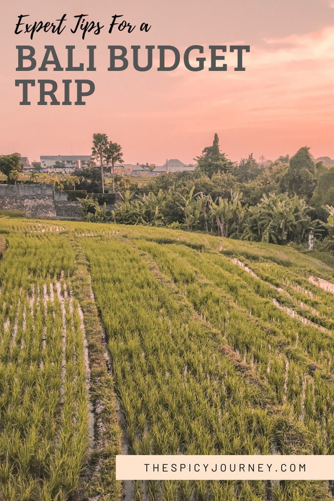 Pinterest graphic for budget trip to Bali from India