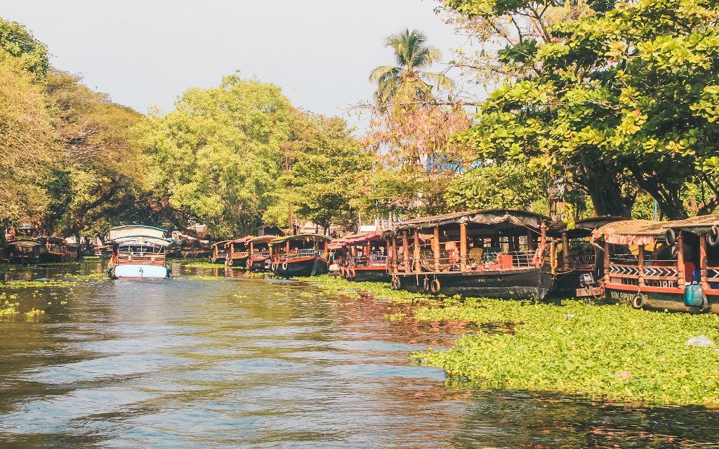 Shikara boats in the Alleppey backwaters, Alleppey Kerala, India
