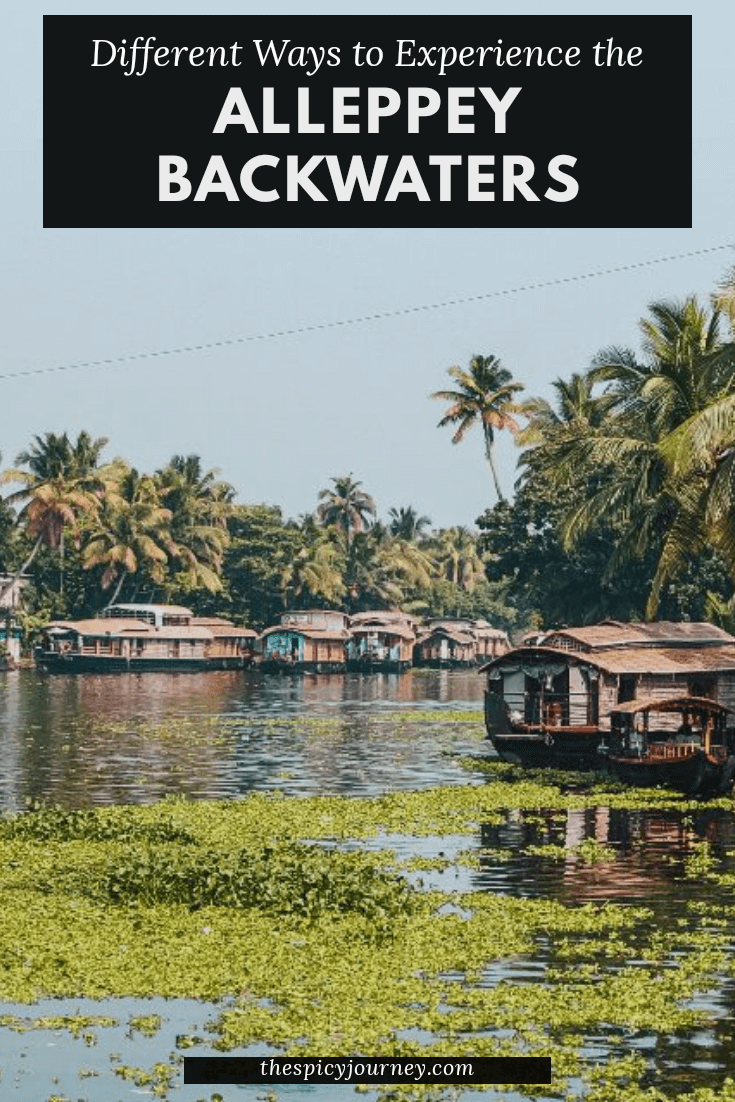 alleppey-backwaters-pinterest-graphic-