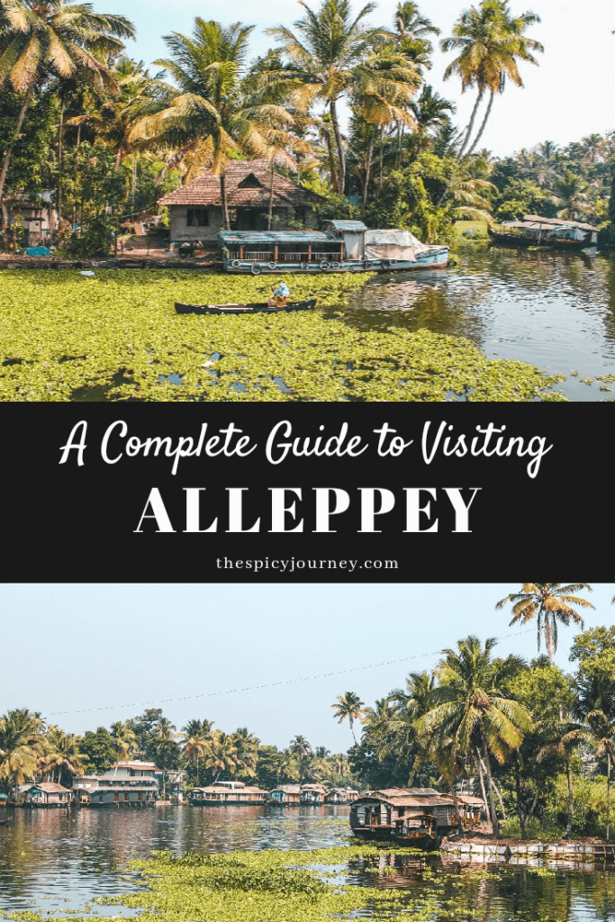 Alleppey backwaters pinterest graphic