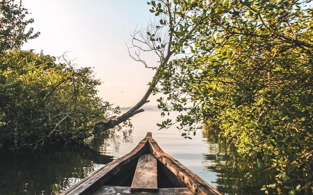 Munroe Island, Kerala – Why You Must Go