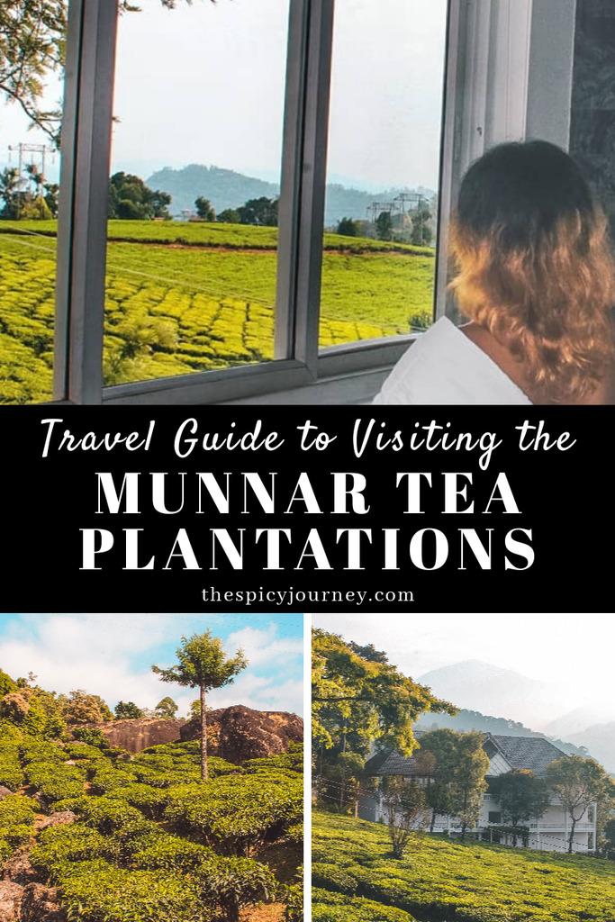 Munnar Tea Plantations Pinterest Graphic