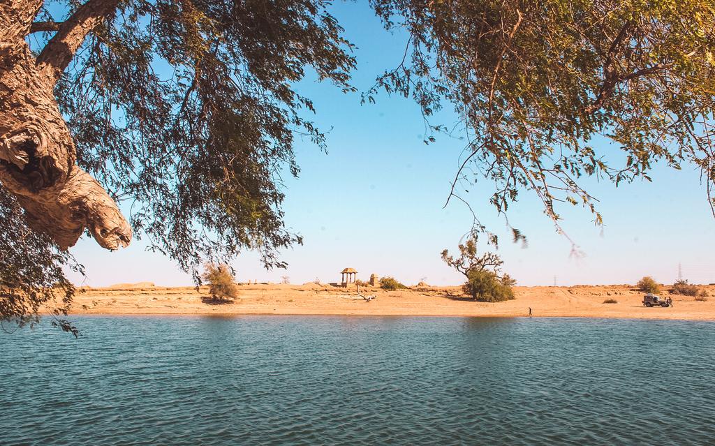 An oasis inside the desert in Jaisalmer