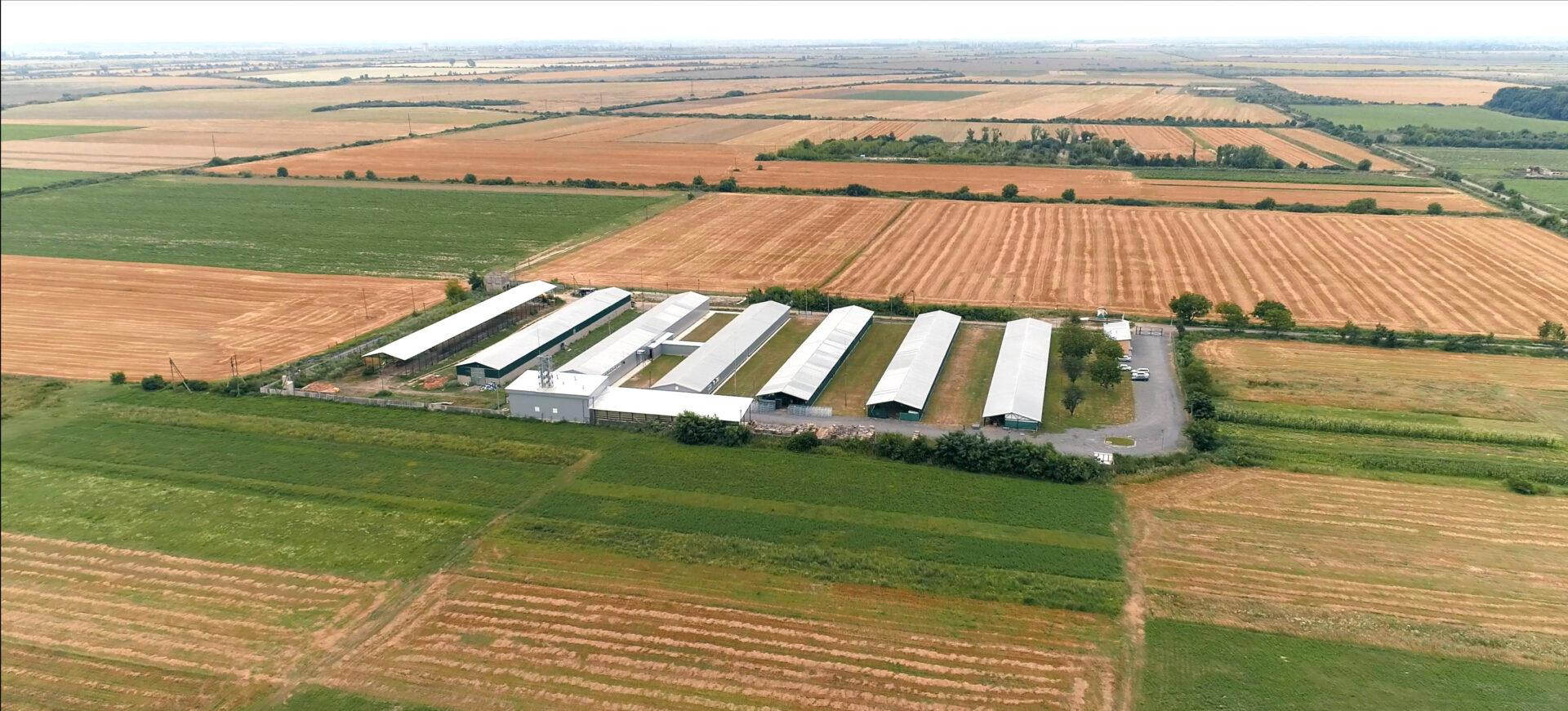 Shiitake farm Ukraine