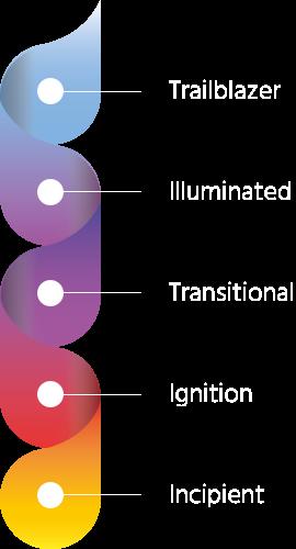 Firebrand Digital Maturity Spectrum