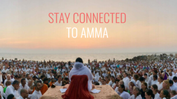 AMMA Live-Streams