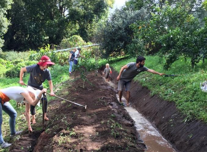 Greenfriends Community Garden Sunshine Coast