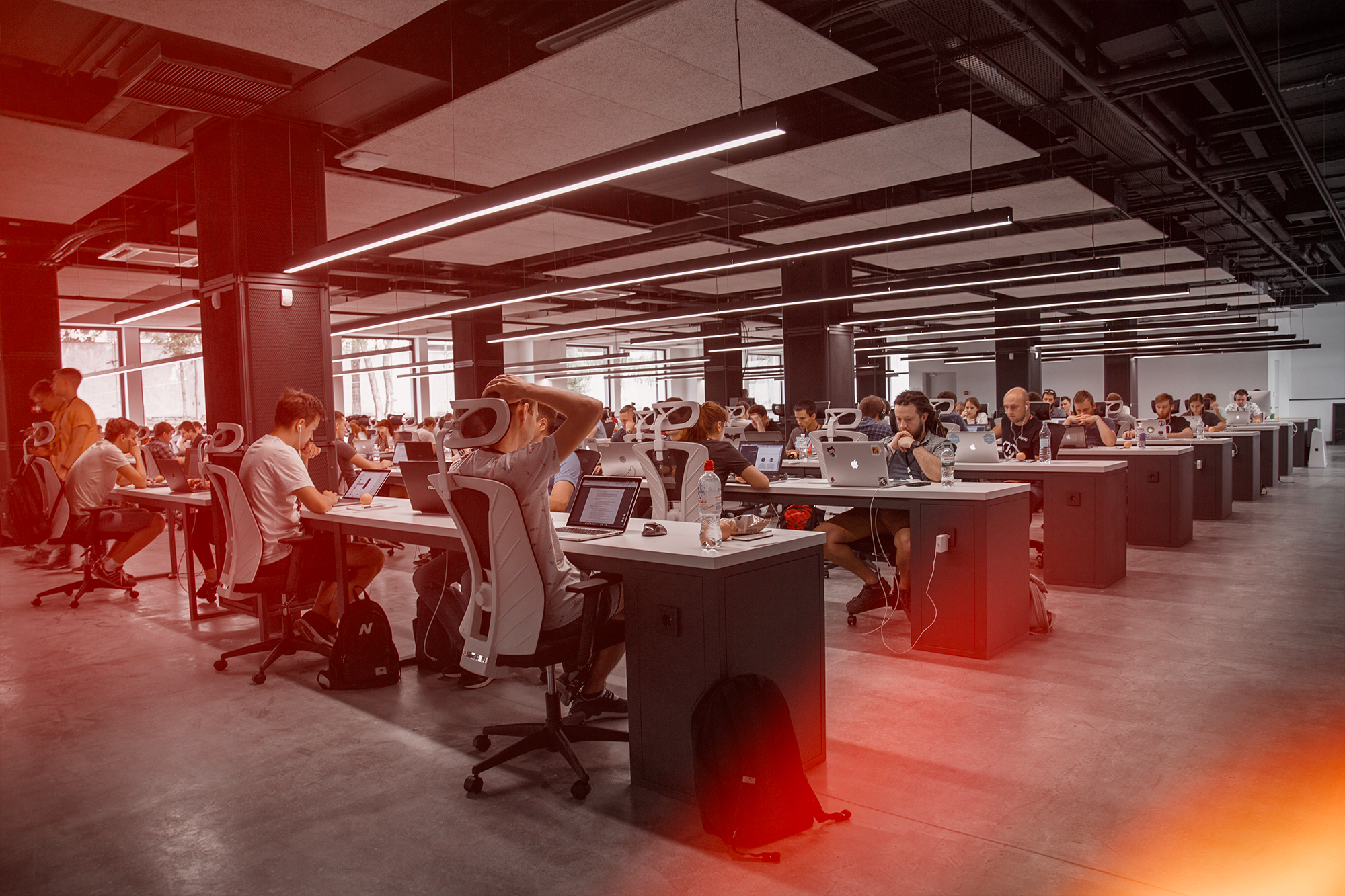 Sentient at work developing innovative SaaS product and solutions