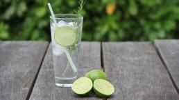 Visite uma destilaria de gin na Inglaterra | Londonices: Dicas de Londres
