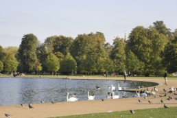 Kensington Gardens Lago